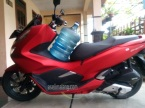 pcx galon