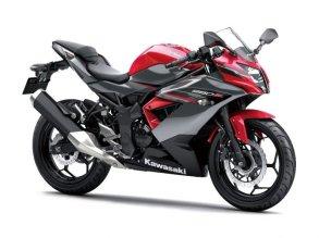kawasaki-ninja-250sl-2-696x5221620589071