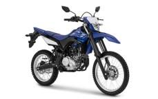 yamaha-wr155 blue